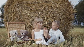 Children at sunset are playing in the field. Baby teddy bears. Slow motion stock footage