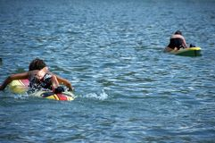 Children on surfboards. Rear view of two children playing on surfboards in blue sea stock photos