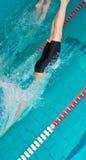 Children swimmers in indoor pool starting Stock Photos
