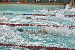 Children swimming freestyle at swimming lesson stock photography