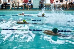 Children swimming freestyle at swimming lesson royalty free stock images