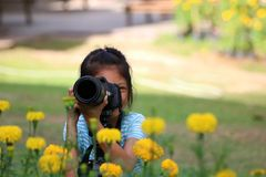 Children take photo of yellow flower by dslr camera. Stock Photos