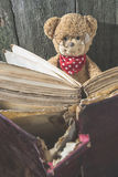 Children teddy bear with book Stock Images