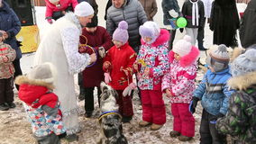 Children throw a ring on the head of trained dog. On holiday in Russia stock video footage