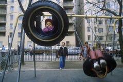 Children on tire swing in park Stock Photos