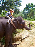 Children tourists riding on an elephant in Sri Lanka. Boys riding on the back of an elephant Royalty Free Stock Image