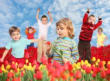 Children on tulips field collage Stock Photography
