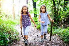 Children - twin girls are hiking in the mountains. Royalty Free Stock Images