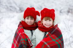 Children twins are standing covered with plaid stock image