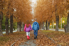 Children under umbrella enjoy to autumn rain outdoors. Stock Photos