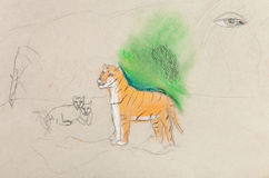 Children unfinished drawing - tigress with cubs Royalty Free Stock Photo
