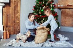 Children unpack gifts for Christmas. The concept of Christmas. stock image