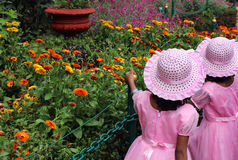Children visiting flowers royalty free stock photos