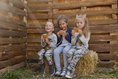 Children with waffels. Three children in countryside sitting on the hay and eating waffels Stock Images