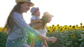 Children on a walk in backlight, cheerful siblings enjoy fresh air on field with sunflowers. Children on a walk in backlight, cheerful siblings enjoy the fresh stock footage