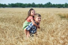 Children on a walk in a field of wheat . Funny brother and sister in the countryside stock image