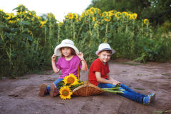 Children walk near a field of sunflowers .The concept of children& x27;s friendship Royalty Free Stock Images