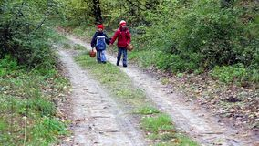 Children walk in the woods. Children walk along a path in the forest, looking for mushrooms stock footage
