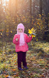 Children walking in autumn Park Stock Photography