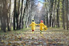 Children are walking in the autumn park Royalty Free Stock Photo