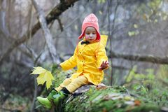 Children are walking in the autumn park royalty free stock photography