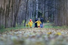 Children are walking in the autumn park stock photography