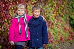 Children walking in beautiful autumn park on warm sunny fall day. Happy children walking in beautiful autumn park on warm sunny fall day Stock Photography