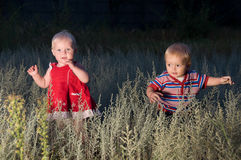 Children are walking in a field at dusk Stock Photos