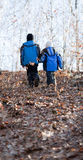 Children walking in a forest Stock Images