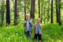Children walking in forest Stock Photo
