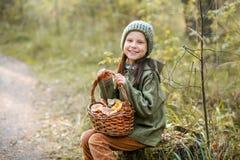 Gathering of mushrooms. Royalty Free Stock Photos