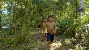 Children walking in forest. Kids playing and sailing by the river and running around amazonian village in Ecuador stock video