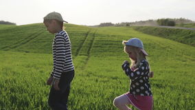 Children are walking by the green meadow. stock video