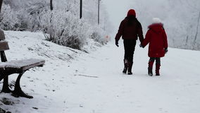 Children walking in snow stock video