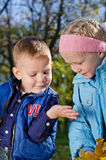 Children watching an insect Royalty Free Stock Images