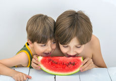 Children and watermelon. Two brothers are eating ripe watermelon Royalty Free Stock Photography