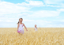 Children in wheat field Royalty Free Stock Image