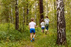 Children in white t-shirts walking in the woods in the summer. Small children in white t-shirts walking in the woods in the summer stock image