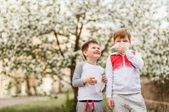 Children wipe their nose with napkins on the background of flowering Apple trees. Allergic reaction of the children to bloom in the spring royalty free stock photo