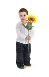 Children woth sunflowers Royalty Free Stock Photography