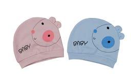 2 children& x27; шляпы s для близнецов, пинка и сини Стоковое Изображение