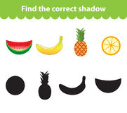 Children's educational game, find correct shadow silhouette. Fruit set the game to find the right shade. Vector illustration Royalty Free Stock Image