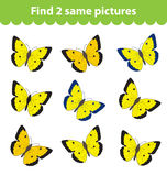 Children's educational game. Find two same pictures. Set of butterflies for the game find two same pictures. Vector illustrat Stock Photo