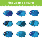 Children's educational game. Find two same pictures. Set of fish for the game find two same pictures. Vector illustration. Stock Photos