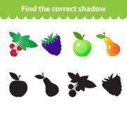 Children& x27; s-Lernspiel, finden korrektes Schattenschattenbild Frucht stellte das Spiel ein, um den rechten Schatten zu finden Lizenzfreie Stockfotos