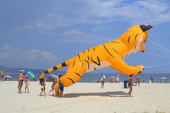 Children and yellow cat kite on the beach Stock Photos