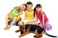 Children with young dog. Cute, affectionate children with young pet German Shepherd Royalty Free Stock Photos