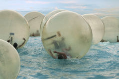 Children in zorbing ball on water Royalty Free Stock Photography