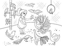 Childrens cartoon coloring the contact birds zoo. Bird black and white picture book. Ornithology for the girl. Vector illustration Royalty Free Stock Image