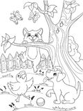 Childrens coloring cartoon animals friends in nature. Duckling, puppy and kitten. Duck, dog and cat Stock Photos